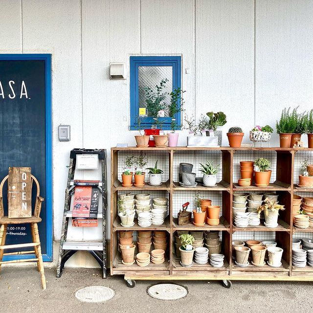 【 鉢入荷しています 】植物に続き鉢も入荷!植物と鉢植え、お好みを見つけておうち時間をお楽しみください。